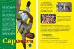 Taenzer-Flyer-Capoeira